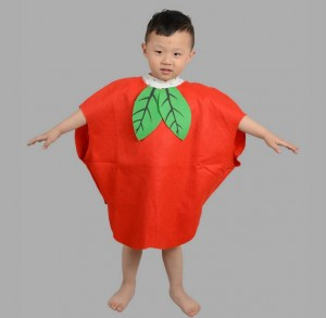 Apple Fancy Dress Outfit for kids