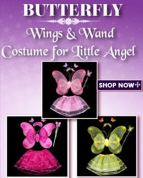 Baby Girls Butterfly Wings and Wand Sets