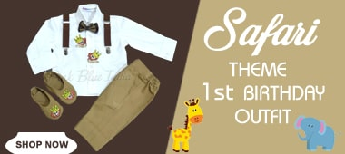 Safari Baby Boy birthday party Outfit