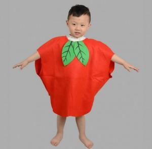 Apple Fancy Dress Outfit for kids