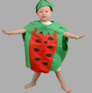 Red and Green Watermelon Fancy Costume