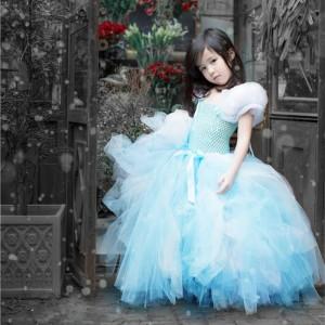Cinderella Style Baby Tutu Dress