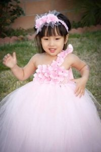 Princess Wedding Party Tutu Dress