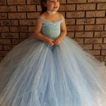 Little Princess V-shaped Gown Tutu Dress