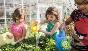 Plant a Garden Kids Summer Fun Activities
