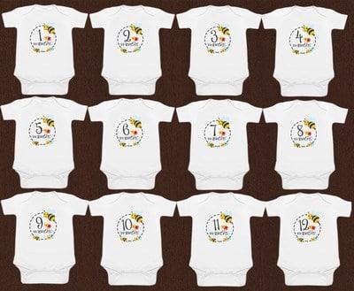 Cute White Newborn Baby Milestones Romper
