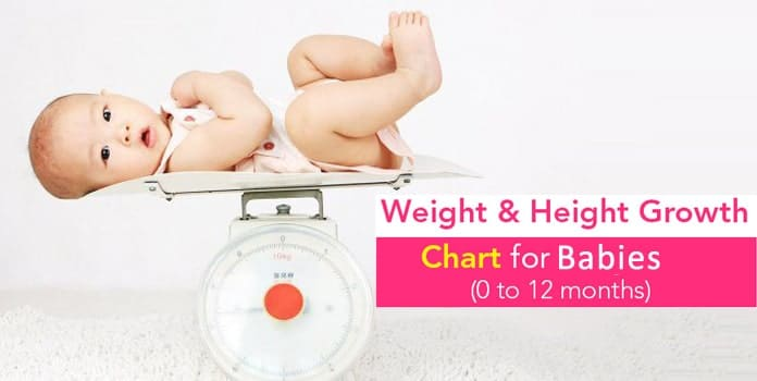 Toddler Height And Weight Chart Australia | Blog Dandk