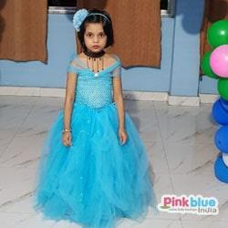 Princess Cinderella Tutu Dress